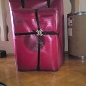 Eşyaları düzenli paketleme ve sigorta